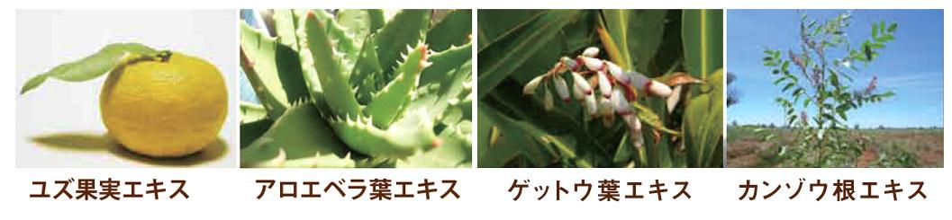 植物エキス